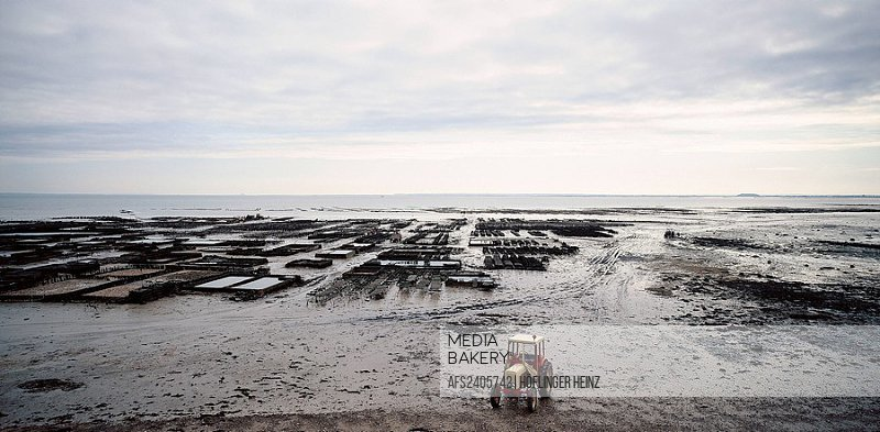 10093861, France, Europe, Brittany, coast, Cancale, oyster culture, tractor, mud, slime, clouds, weather, oysters, breeding, sea