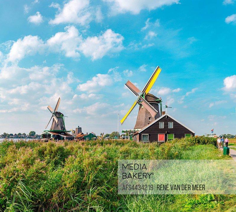 Windmills called De Zoeker Het Jonge Schaap, De Bonte Hen, Zaandam, Noord-Holland