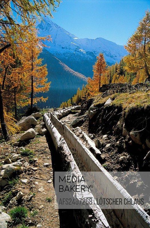 10545141, Switzerland, Europe, Valais, sceneries, Lötschental, snow mountain, water channel, wooden canal, autumn, larches, Suon