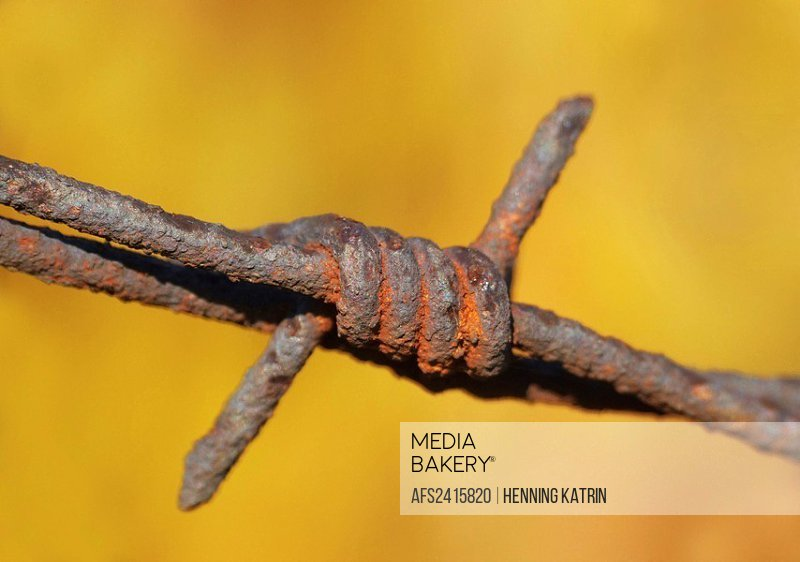 sting wire, detail, stings, wire, rust, rusting