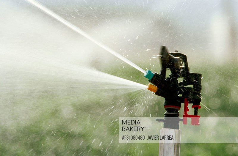 Sprinklers irrigating potato fields. Navarre. Spain