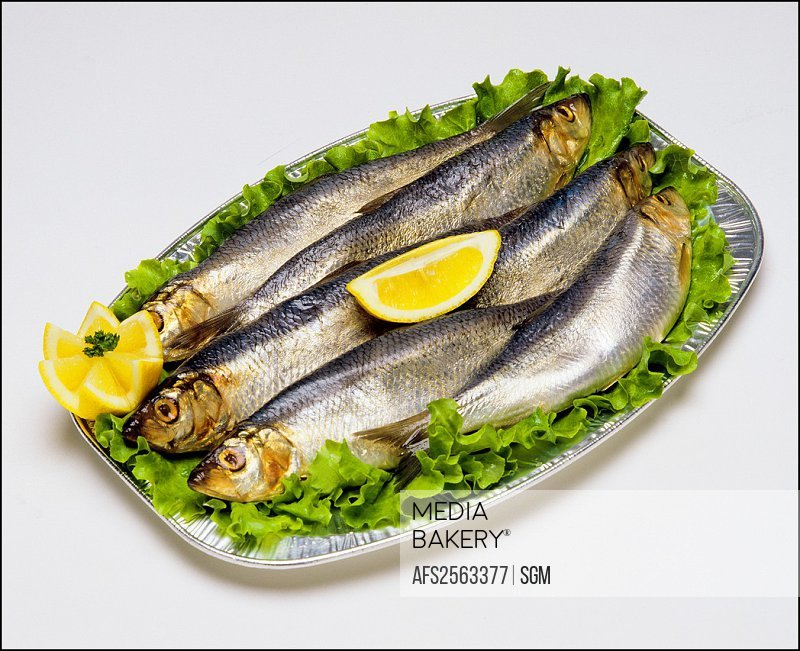 Whole raw Sardine fishes on platter