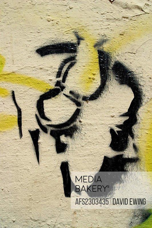 Youth profile, Stencil Graffiti Art