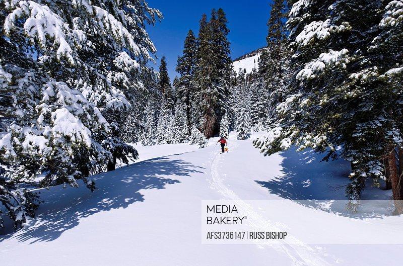 Mediabakery - Photo by Age Fotostock - Backcountry skier