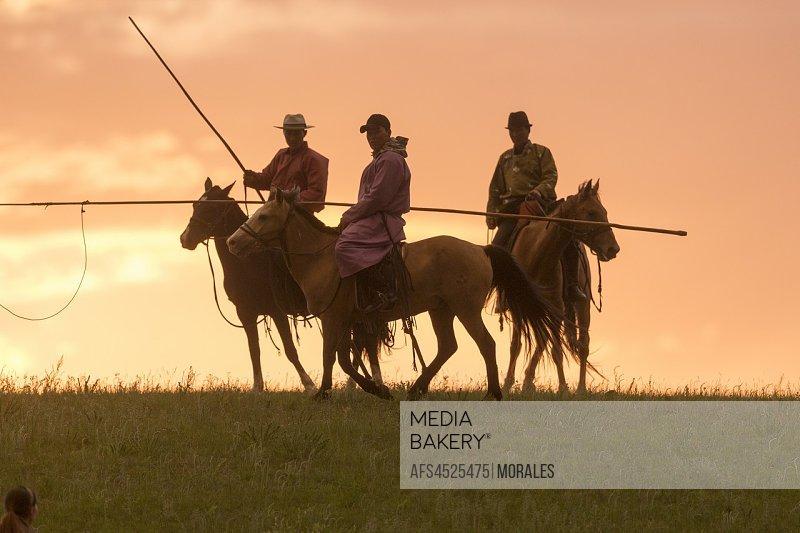 China, Inner Mongolia, Hebei Province, Zhangjiakou, Bashang Grassland, Mongol on a horse, with a catch lasso.