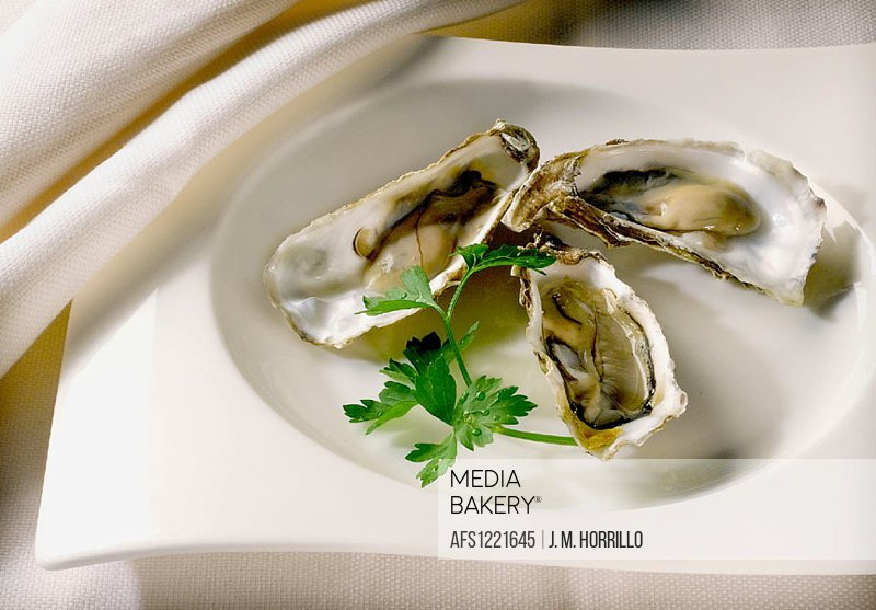 Oysters dish.