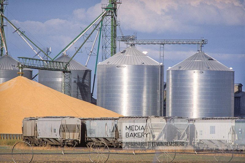 Idaho, USA - Grain elevator, grain, and rail cars.