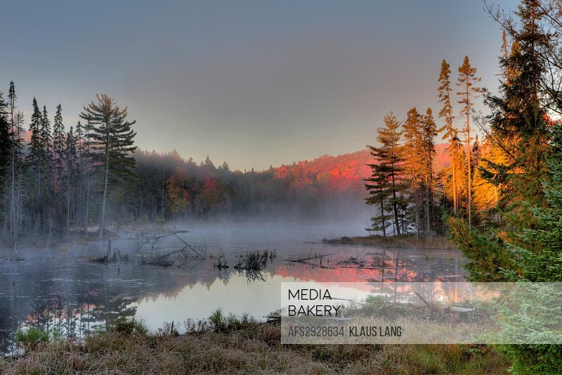 Early Morning, Autumn Colours in Algonquin Provincial Park, Ontario, Canada