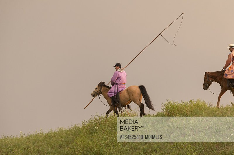 China, Inner Mongolia, Hebei Province, Zhangjiakou, Bashang Grassland, Mongol on a horse, with a catch lasso.