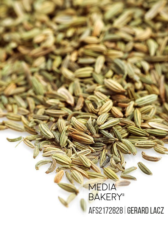 FENNEL SEEDS foeniculum vulgare AGAINST WHITE BACKGROUND