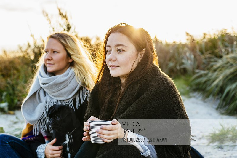 Thoughtful female friends looking away while sitting with dog on beach