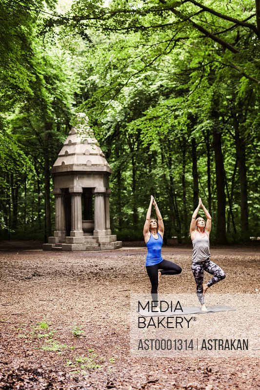 Young women practicing yoga in tree pose at park