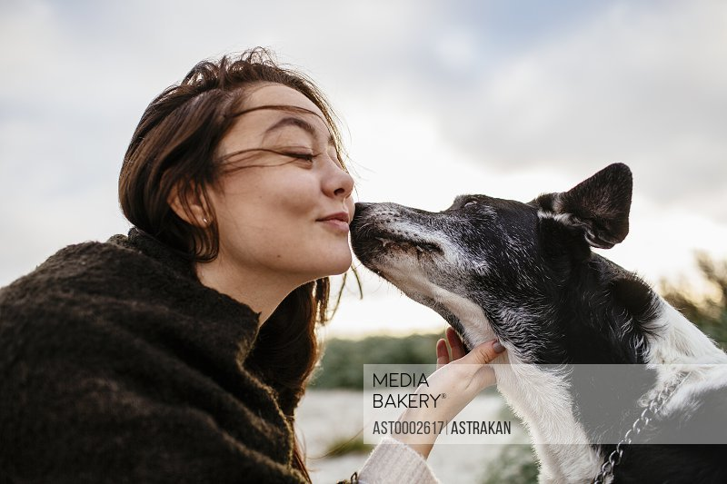 Dog kissing young woman on cheek at beach during sunrise