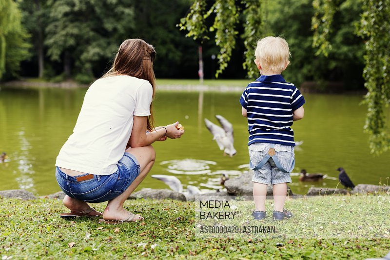 Rear view of mother and son feeding birds at pond