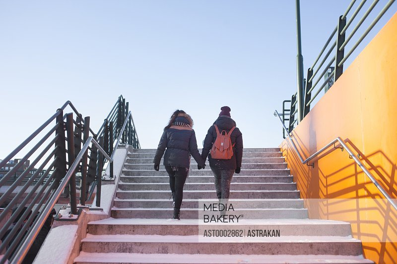 Rear view of female friends moving up steps against clear sky during winter