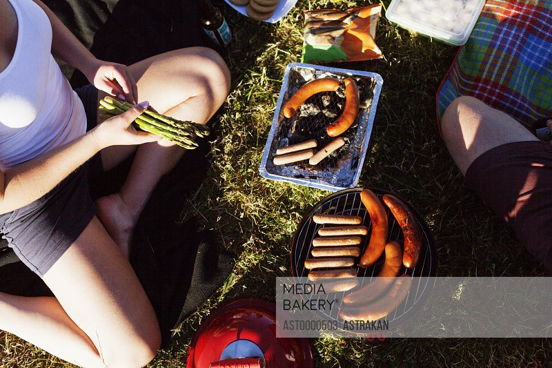 High angle view of woman preparing food on barbeque at picnic