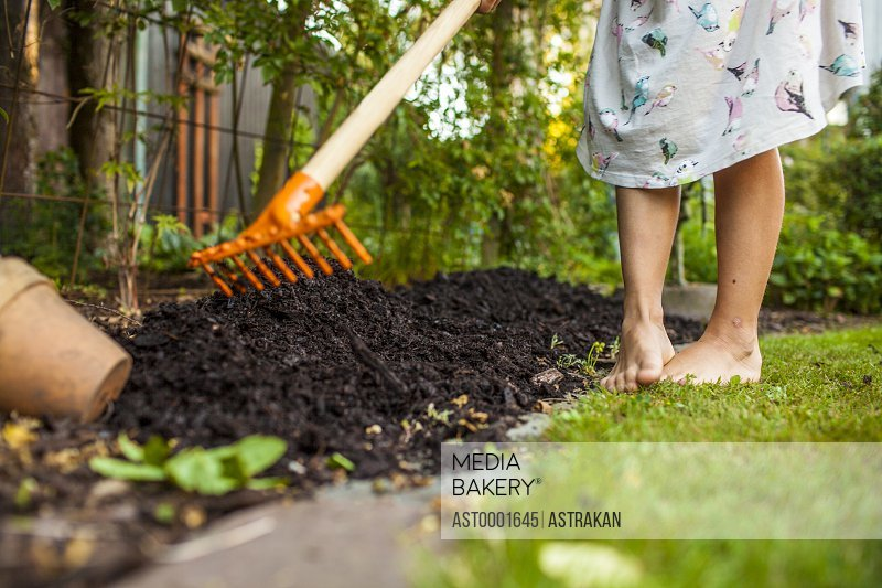 Low section of girl spreading fertilizer with gardening fork in backyard
