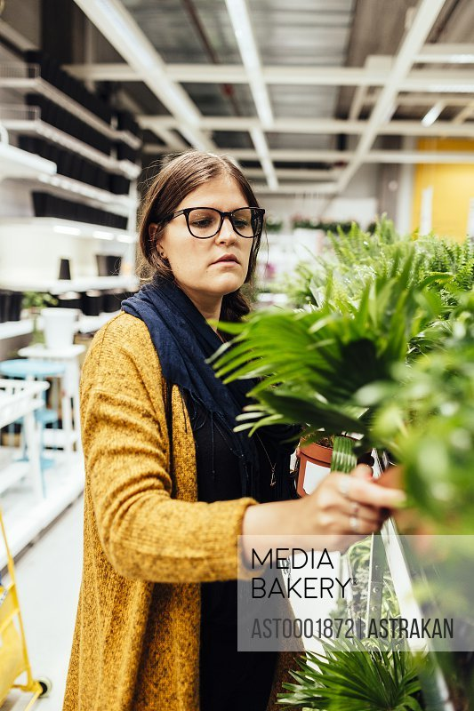 Young woman buying plants in garden center