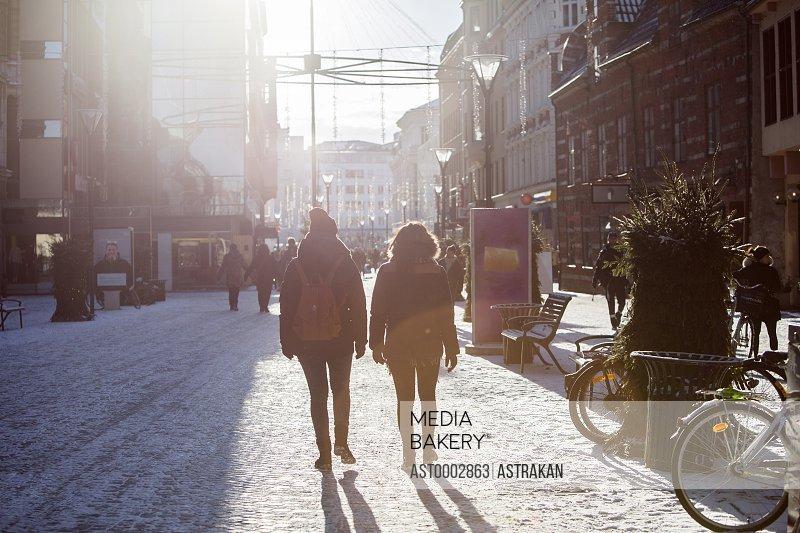 Rear view of female friends walking on city street