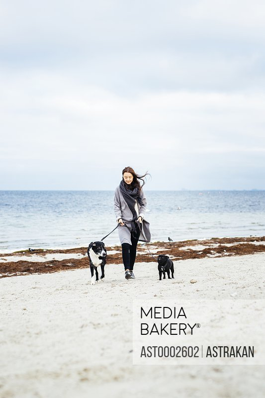 Full length of woman walking with dogs on beach