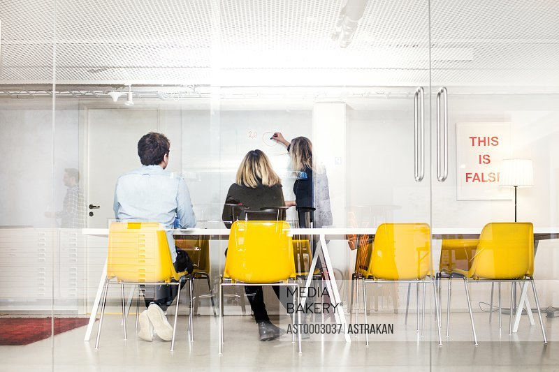 Rear view of business people looking at colleague giving presentation in office