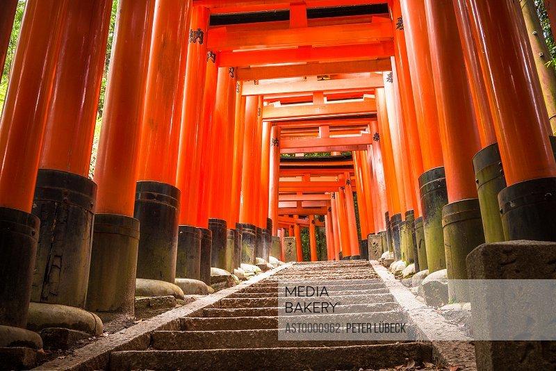Path of torii gates at Fushimi Inari-taisha the head shrine of Inari located in Kyoto Japan