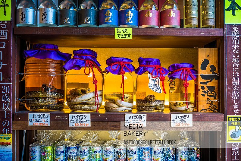 Jars of Habushu Okinawan awamori-based liquor with a venomous habu snake inside central Naha Japan
