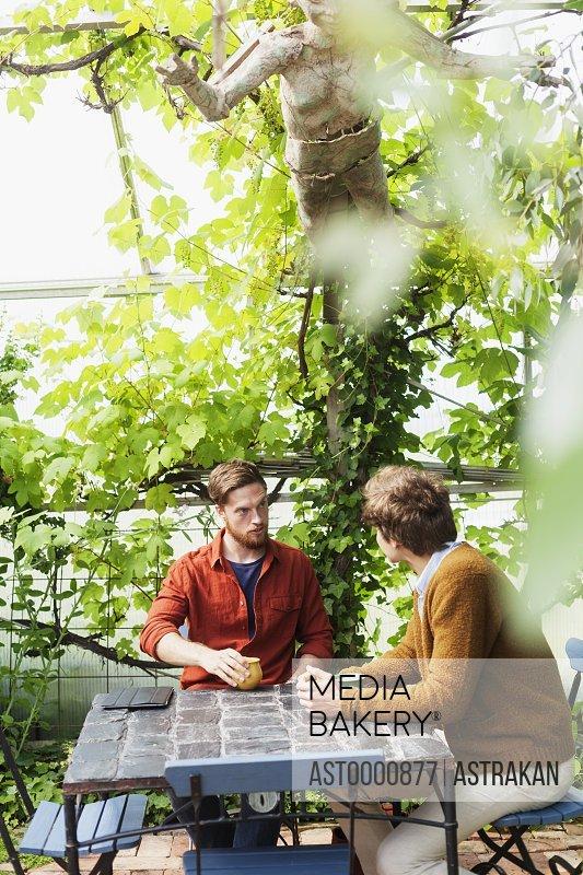 Men having conversation while having coffee at greenhouse