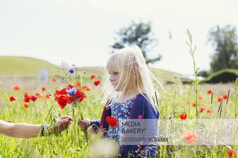 Woman's hand giving wildflowers to cute girl standing at grassy field