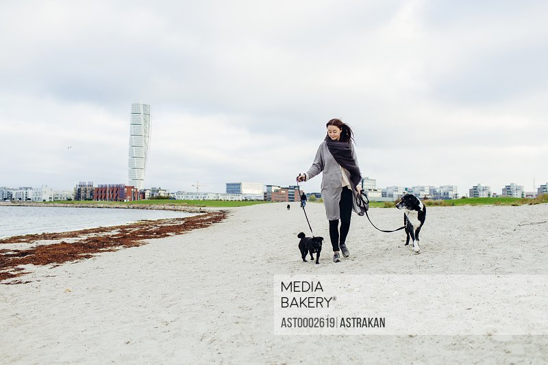 Full length of woman walking with dogs on beach against sky