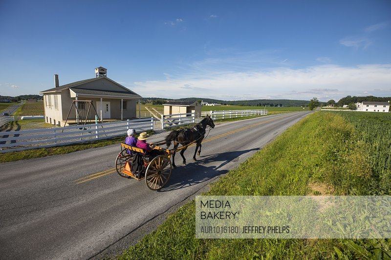 Amish buggy, Intercourse, Lancaster County, Pennsylvania, USA<br><br><span style='color: red'>Editorial Use Only.</span><br><br>