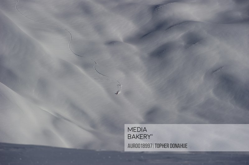 Skier carving a snow landscape