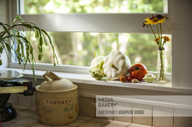 Vegetables and small vase with flowers standing on kitchen window sill, Chester, Nova Scotia, Canada