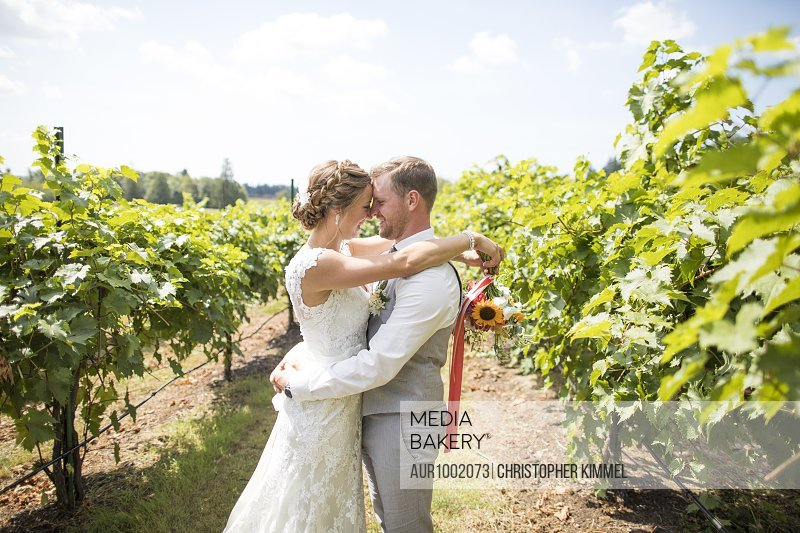 Side view, waist up shot of bride and groom embracing in vineyard, Abbotsford, British Columbia, Canada