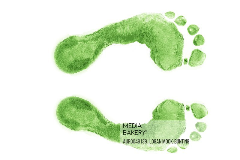 An illustration about turning your carbon footprint Green.