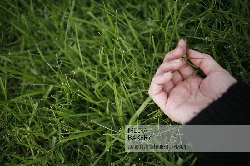 A Japanese lady touches grass with her hand in a park in San Diego, California. (releasecode: kimura_mika.jpg)