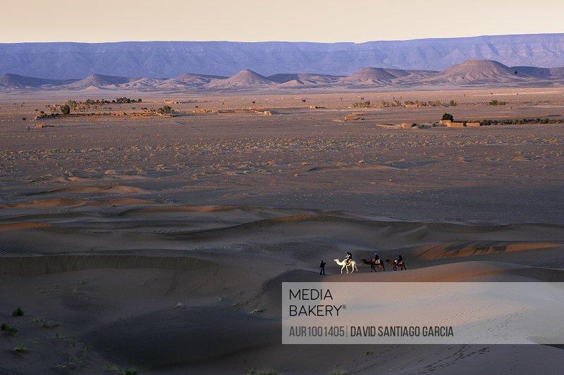 Erg Chebbi dunes at sunrise, Sahara Desert near Merzouga, Morocco, North Africa