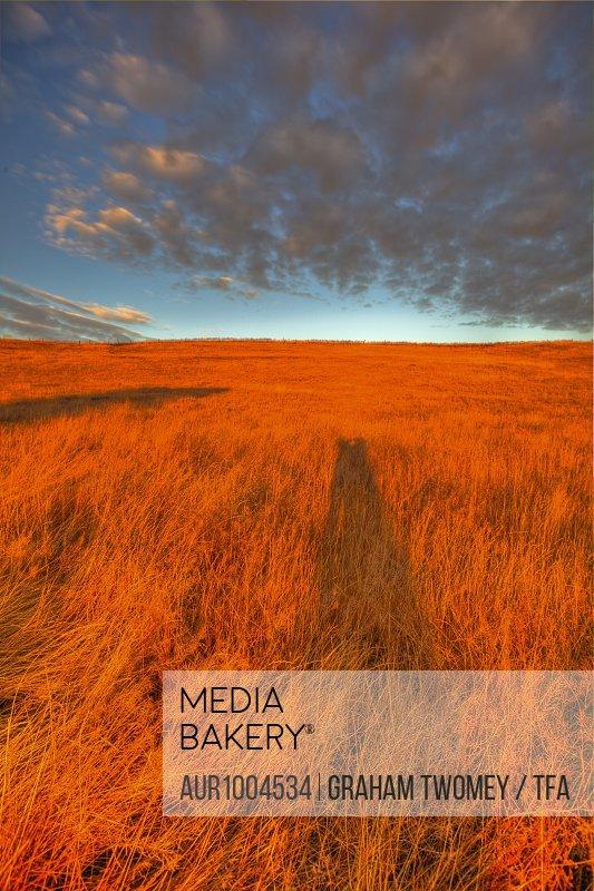 Rural prairie scene at sunrise, with distant farm