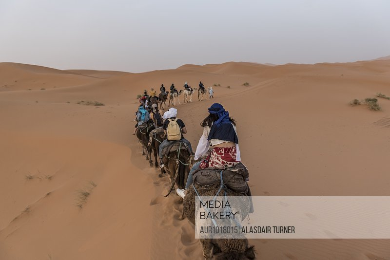 Tourists riding camels in Sahara Desert, Merzouga, Morocco<br><br><span style='color: red'>Editorial Use Only.</span><br><br>