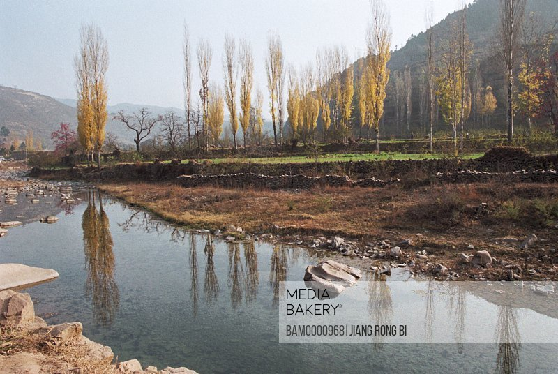 View of a river with hills in the background, Birches at End of Chenjiazhuang Village, Yichuan County, Yan'an City, Shanxi Province, People's Republic of China