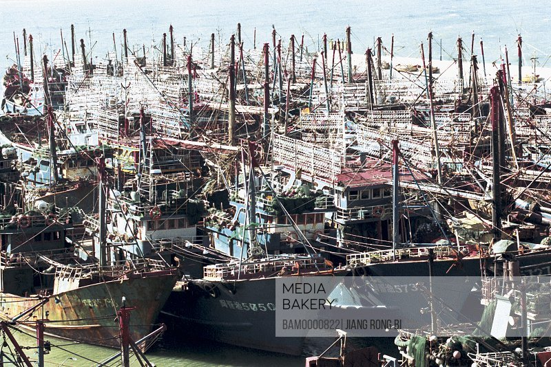 Fishing Boats in harbor of Shenhu Bay, Fish Boats in Harbor Area of Shenhu Bay , Quanzhou City, Fujian Province, People's Republic of China