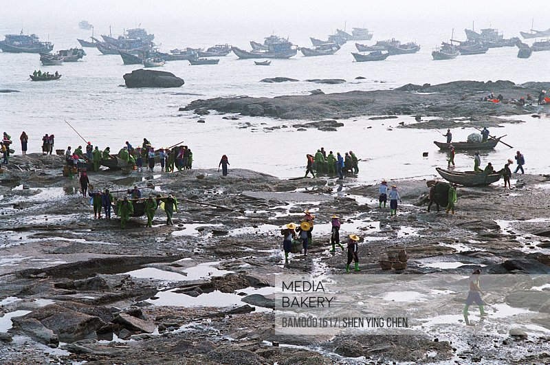 Elevated view of fishermen fishing at seashore, Huian person of Xiaozuo wharf returned from the sea , Xiaozuo wharf, Huian County, Fujian Province of People's Republic of China