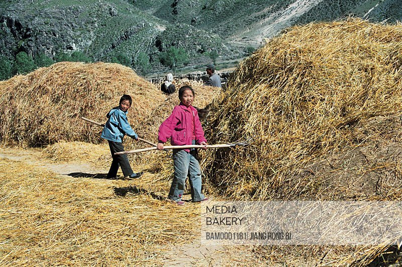 Portrait of children sun drying culm, Guyuan County, Hebei Province of People's Republic of China