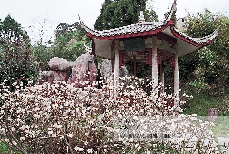 Pagoda amidst plants with trees in the background, Cryptomeria king park alcove, Guling, Fuzhou City, Fujian Province of People's Republic of China
