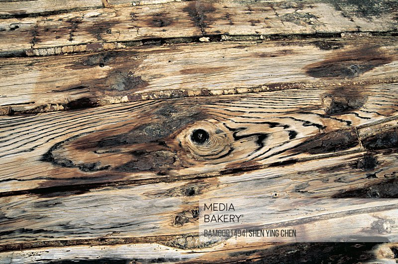 Close-up of a wooden plank, The old full in the ship building in Xiaozuo, Xiaozuo ship repairing field, Huian County, Fujian Province of People's Republic of China