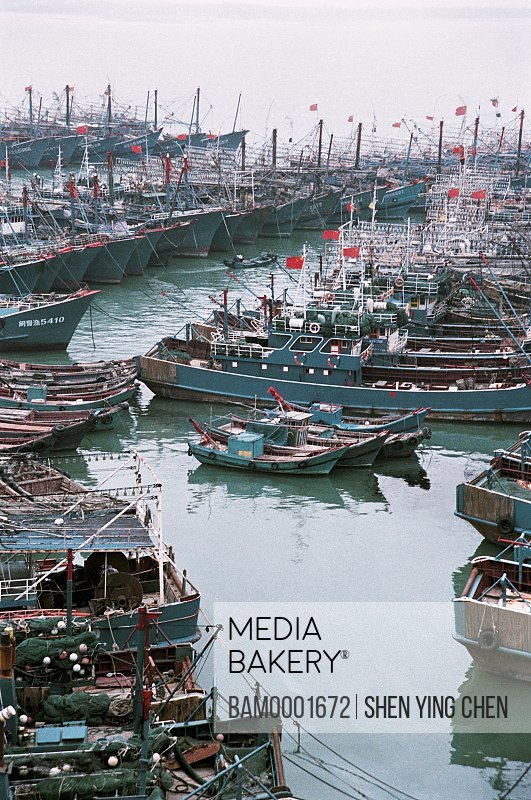 Elevated view of boats docked in wharf, The boat of the rests fish season at the Jinjiang wharf, Jinjiang Seashore, Quanzhou City, Fujian Province of People's Republlic of China