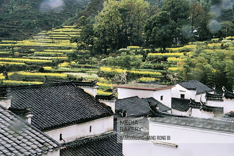 Elevated view of Qinyuan village in spring, Wuyuan County, Jiangxi Province, People's Republic of China