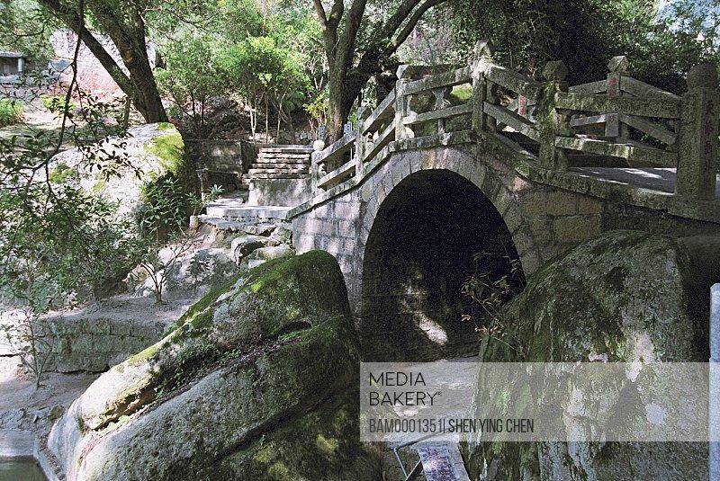 Old banyan fig of Qingzhi Temple, Qingzhi Temple, Lianjiang County, Fuzhou City, Fujian Province of People's Republic of China