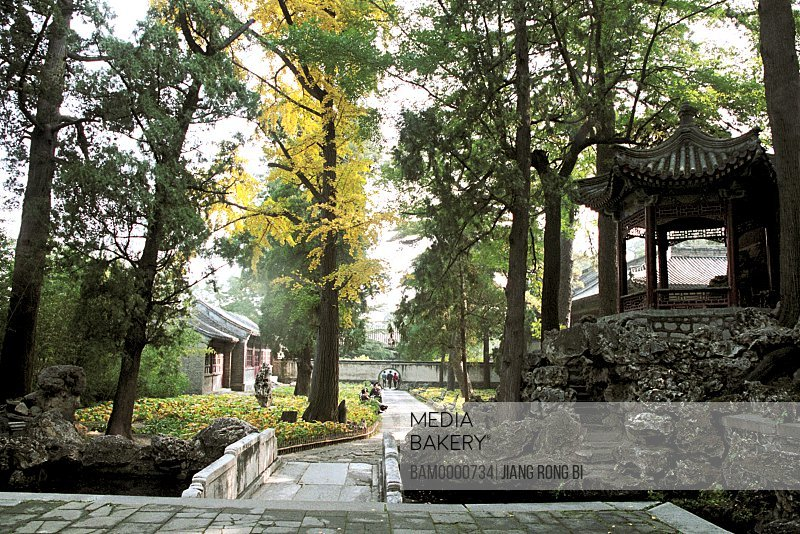 Old structure and trees in park with people in background, The scenery of Xiangshan Park, Beijing City of People's Republic of China