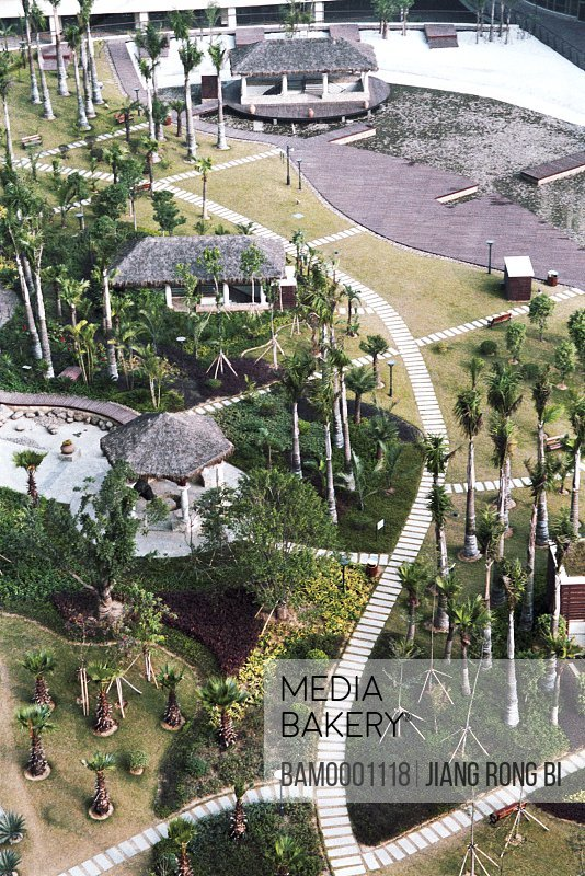 Elevated view of garden with palm trees, The inner sight in the outward beach garden of Shimao, Fuzhou City, Fujian Province, People's Republic of China